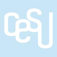 Centro Studi Cesu | Diploma di Maturità | Recupero Anni Scolastici